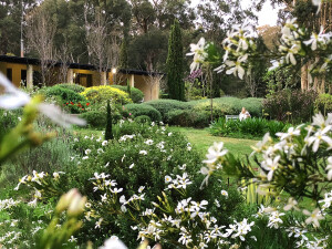 Naturescape_Grounds_House_Down_South